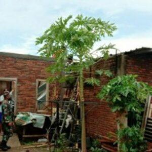 Kondisi salah satu rumah warga akibat puting beliung